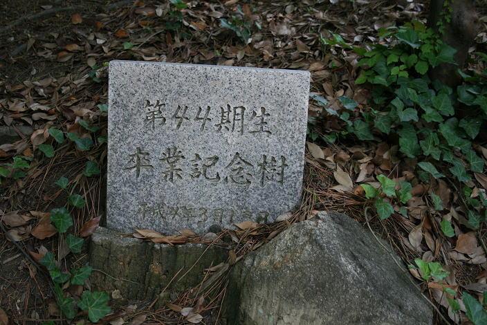 image_44